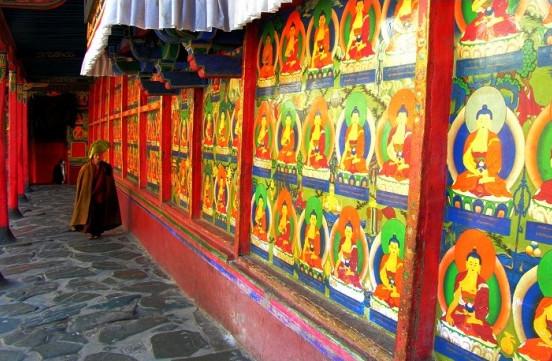 走进西藏 走进人间天堂 - 一起过,健康网络生活 - 一起过