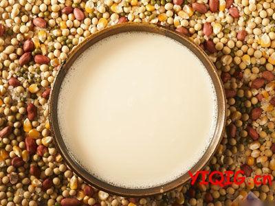 怎样做的豆浆最好喝