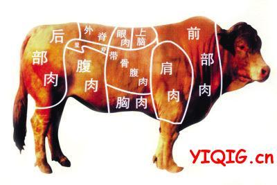 牛肉哪个部位最嫩