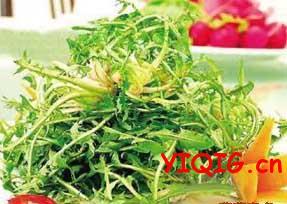 吃野菜还能防癌?