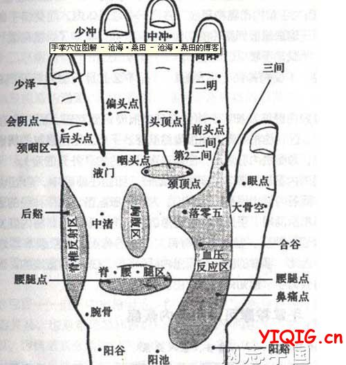 手心手背穴位图如何按摩保健