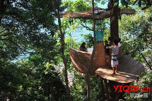 树上餐厅,在树上吃饭看风景