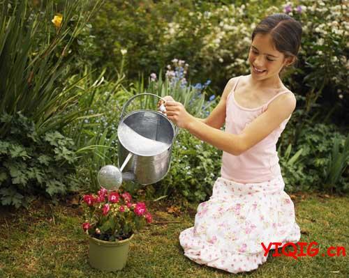 给鲜花施自制安全的水肥 浇花小窍门