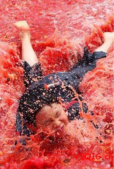 韩国西红柿节,快乐与西红柿同飞!
