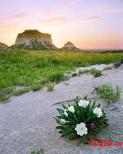 迷死人的风景 触动我们的心灵
