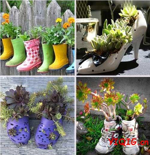 旧鞋子种花别样的盆景 如何用旧鞋子种花?