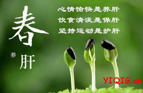 春天饮食多吃哪些菜能养肝补阳?