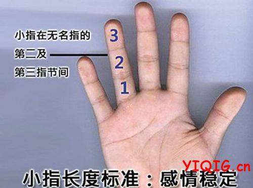 小拇指透露性格和预示婚姻