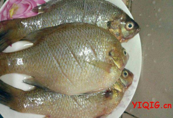 太阳鱼的家常做法 清蒸太阳鱼